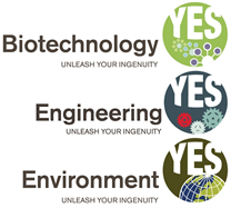 Biotechnology YES, Engineering YES and Environment YES